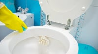 "<img src=""Toilet Cleaning"" alt=""A Gloved Hand with a Sponge Cleaning a Toilet"" />"